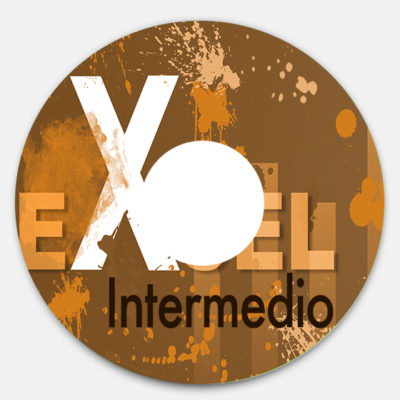 dvd-excel-intermedio-2016